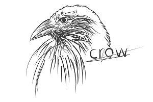 Raven - tattoo style.  best set.