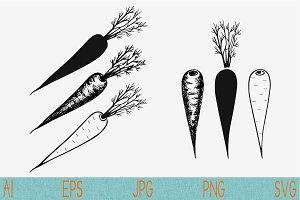 carrot set vector svg png eps