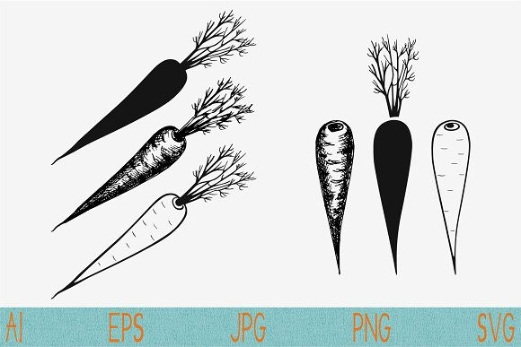 Carrot Set Vector Svg Png Eps