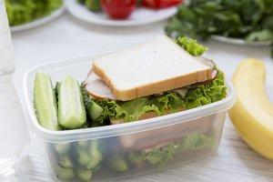 School lunch box with sandwich