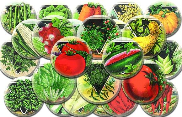 Vintage Vegetable Collage Sheets C1