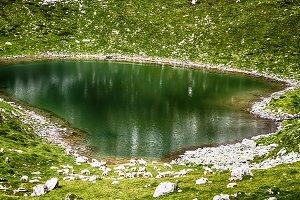 Mountain lake with near flock