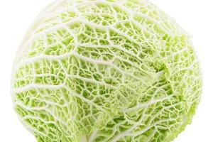 Fresh whole savoy cabbage on white