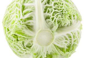 Sweet whole savoy cabbage on white