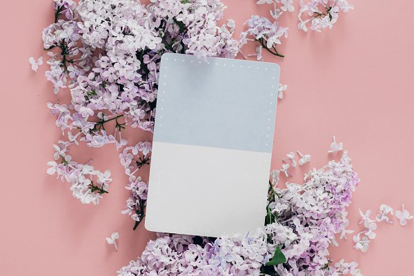 Abstract Stock Photos: KucherPhoto - Postcard with lilac flowers flat lay