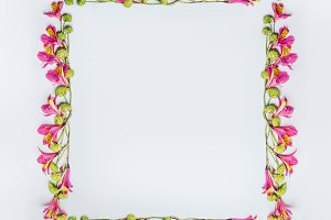 Square frame of tropical flowers