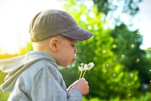 Cute child blowing dandelion