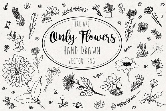 Only Flowers