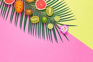 Tropical Palm Leaf, Fruits.Bright Summer Set.Vegan