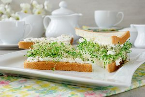 Sandwich with ricotta and alfalfa