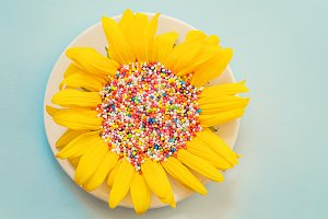 Sunflower, Yellow flower, Candy Cake