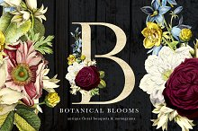 Botanical Blooms & Monograms by Catherine Haugland in Objects