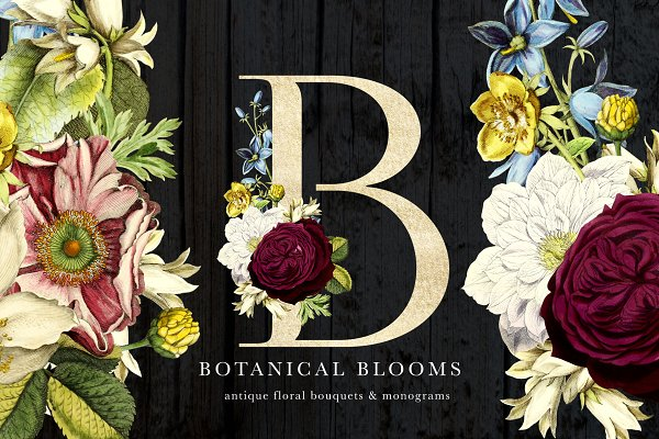 Objects: Eclectic Anthology - Botanical Blooms & Monograms