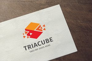 Triangle Cube Logo