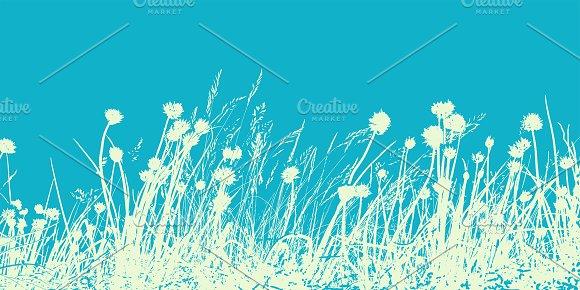Summer Field With Wild Flowers Herb