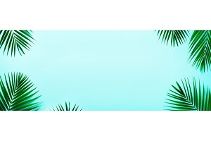 Tropical palm leaves on pastel turquoise background. Minimal summer concept. Creative flat lay with copy space. Top view green leaf on punchy pastel paper. Banner