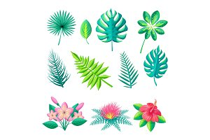 Leaves and Flowers Collection Vector Illustration