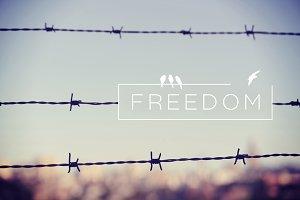 Freedom quote concept