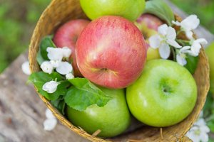 Fresh sweet juicy red and green apples with flowers on a wooden