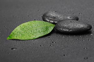 black stone with leaf