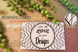 Business Card in Nature 3 MockUp