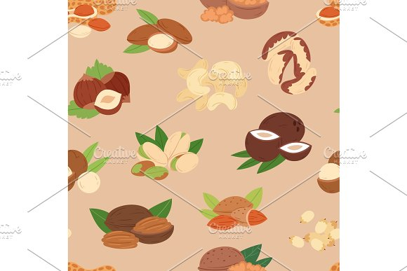 Nut Vector Nutshell Of Hazelnut Or Walnut And Almond Nuts Set Nutrition With Cashew Peanut And Chestnuts Nutmeg Illustration Isolated On Seamless Pattern Background