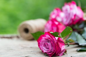 Perfect pink rose flower on wood