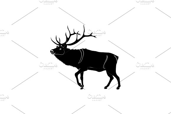 Reindeer Deer Vector Black On White
