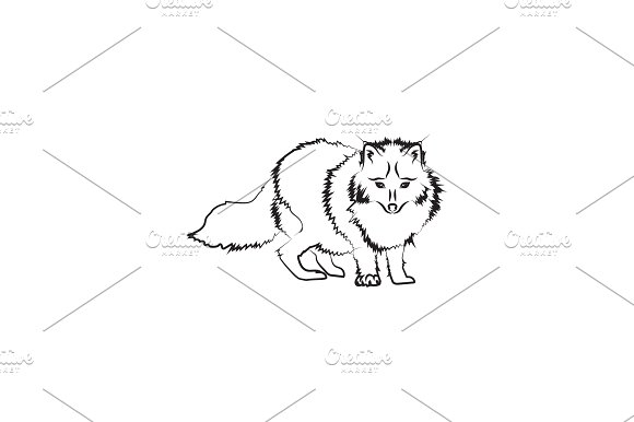 Arctic Fox Vector Black On White