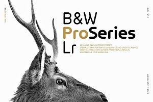 B&W ProSeries Lr