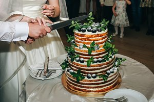 Wedding couple is cutting cake