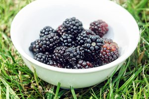 Ripe blackberry in white bowl
