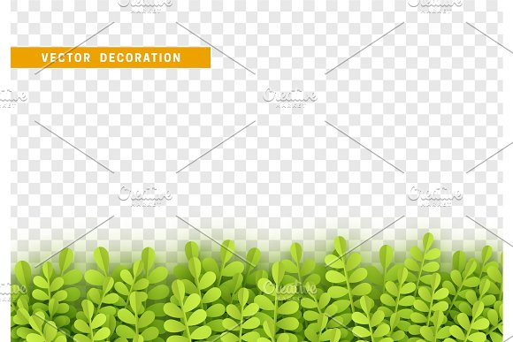 Grass Shape Plant Leaves Border Isolated With Transparent Background