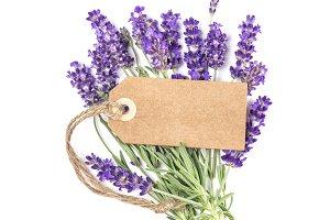 Lavender flower paper tag