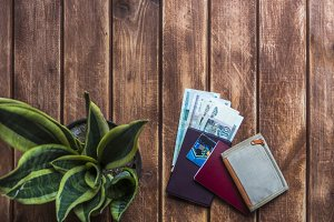 personal accessories for travel, passport wallet and money on a wooden surface