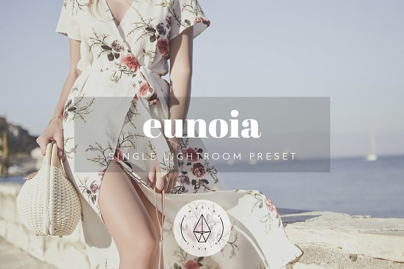 Eunoia Lightroom Preset
