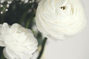 Soft white flower arrangement