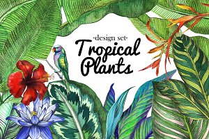 Tropical Design Set