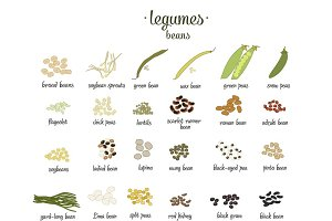 Vector set of Legumes and beans