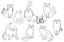 Cats. Vector set