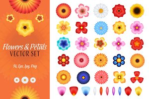 Flowers and Petals Vector Set