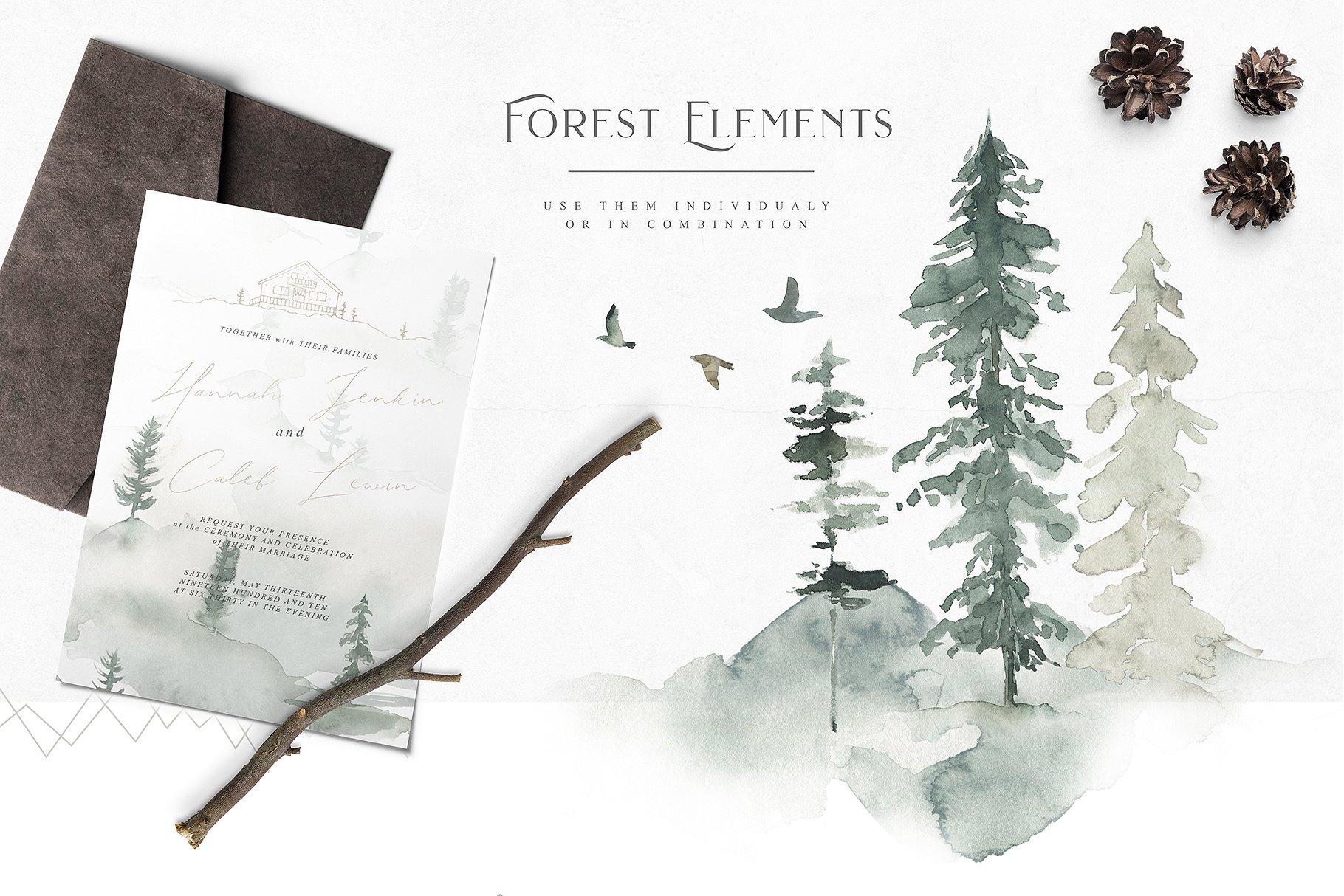 previous - Pinery Christmas Trees
