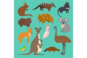 Australian wild vector animals cartoon collection australia popular animals like platypus, koala, kangaroo, ostrich set isolated on background