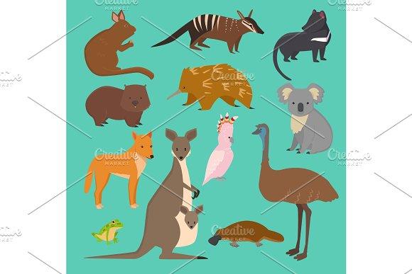 Australian Wild Vector Animals Cartoon Collection Australia Popular Animals Like Platypus Koala Kangaroo Ostrich Set Isolated On Background