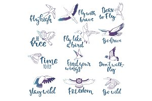 Bird lettering vector text fly high and flying birdie swallow with feather wings illustration set of owl freedom print for typography with handwritten letters isolated on white background