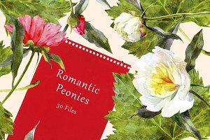 Romantic Peonies - Watercolor Set