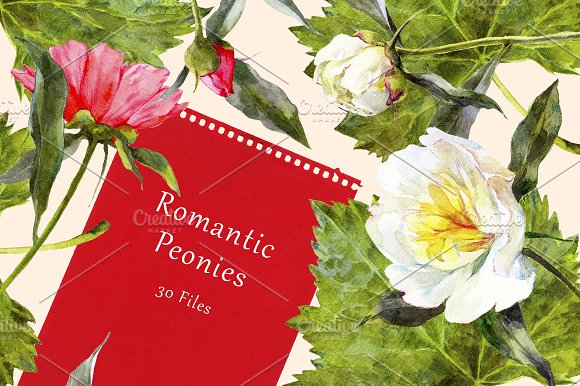 Romantic Peonies Watercolor Set