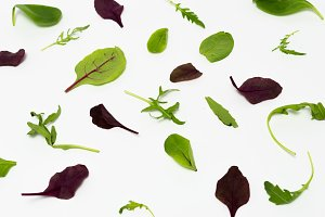 Texture of vegetables. Background of vegetables. Vegetables on the white.