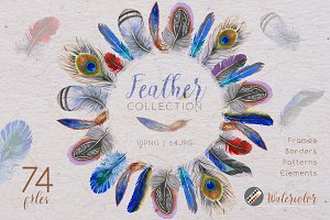 Feather collection PNG watercolor