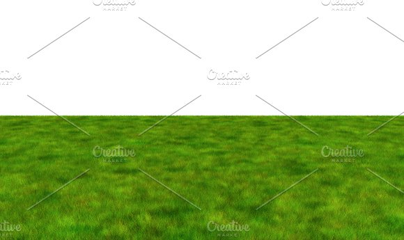 Lush Grass Field On White Background 3D Illustration